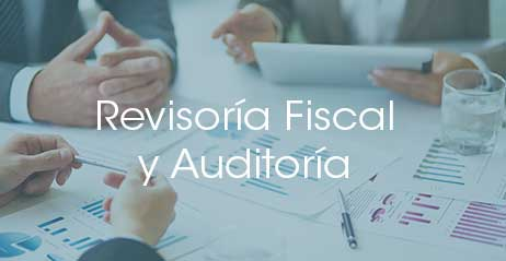Revisoría Fiscal y Auditoria